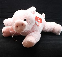 Toby the Learned Pig
